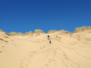 Two people walking down a sand dune, set against a very blue sky.